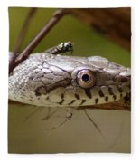 Oak Snake And Fly Fleece Blanket