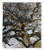 Oak Tree In Winter Fleece Blanket