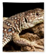 Ocellated Lizard Timon Lepidus Fleece Blanket