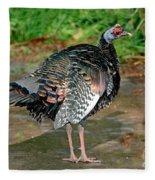 Ocellated Turkey Fleece Blanket