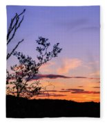 Ocotillo Sunset Fleece Blanket