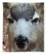 October Deer Iv Fleece Blanket