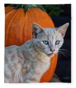 October Kitten #3 Fleece Blanket