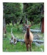 Oh Dear I See A Deer Fleece Blanket