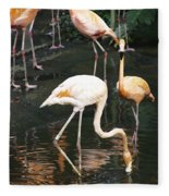 Oil Painting - The Head Of A Flamingo Under Water In The Jurong Bird Park In Singapore Fleece Blanket