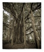 Old Banyan Tree Fleece Blanket