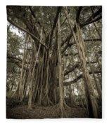 Old Banyan Tree Fleece Blanket