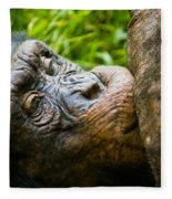 Old Chimp Fleece Blanket