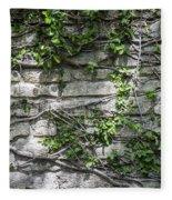 Old Coquina Wall Fleece Blanket