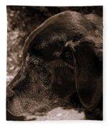 Old Dog Fleece Blanket