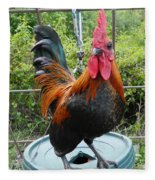 Old English Game Bantam Fleece Blanket