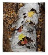Old Fallen Birch Fleece Blanket