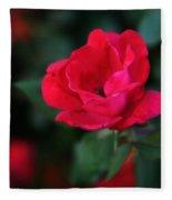 Old Fashioned Rose Fleece Blanket