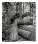 Old Growth Forest Black And White Collection 4 Fleece Blanket