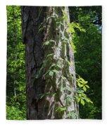 Old Growth  Loblolly Pine - Congaree Swamp Fleece Blanket