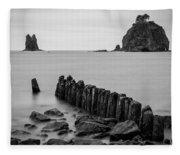 Old Pilings - La Push - Washington - July 2013 Fleece Blanket