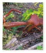 Old Rusty Bike In The Weeds 2 Fleece Blanket