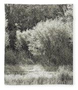 Old Time Autumn Fleece Blanket