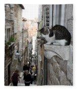 Old Town Alley Cat Fleece Blanket