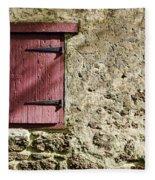 Old Wall And Door Fleece Blanket