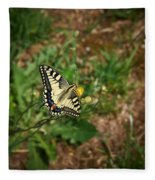 Old World Swallowtail. Montorfano. Cologne Fleece Blanket