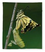 Oldworld Swallowtail Emerging Fleece Blanket