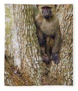 Olive Baboon Juvenile Kibale Np Uganda Fleece Blanket