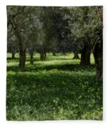 Olive Grove Color Italy Fleece Blanket