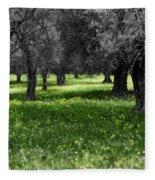 Olive Grove Italy Cbw Fleece Blanket