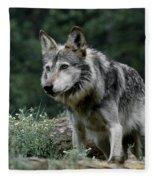 On Alert Fleece Blanket
