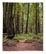 On The Enchanted Path Fleece Blanket