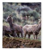 On The Ledge Fleece Blanket