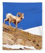 On The Mountain Fleece Blanket