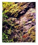 On The Side Of The Rock Fleece Blanket