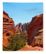 On The Trail At Arches Np Fleece Blanket