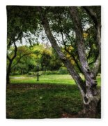 One Autumn Day - Central Park - Nyc Fleece Blanket