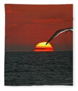 One Black Skimmers At Sunset Fleece Blanket