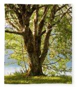 One Spring Tree Fleece Blanket