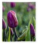 One Tulip Among Many Fleece Blanket