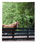 One Very Pretty Hilton Head Island Horse Fleece Blanket