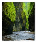Oneonta River Gorge Fleece Blanket