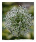 Onion Seeds Fleece Blanket