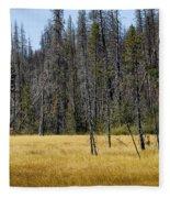 Open Meadow 2 Fleece Blanket