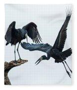 Openbill Storks Flying, Tarangire Fleece Blanket