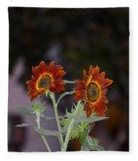 Orange Asters Fleece Blanket