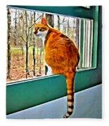 Orange Cat In Window Fleece Blanket