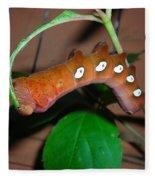 Orange Caterpillar Fleece Blanket