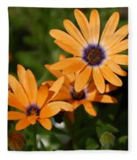 Orange Daisy Fleece Blanket