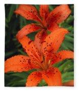 Orange Day Lilies Fleece Blanket