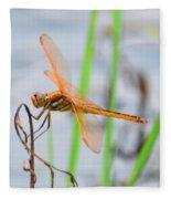 Orange Dragonfly On The Water's Edge Fleece Blanket
